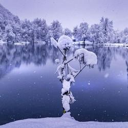 Autour du Lac de Bethmale...